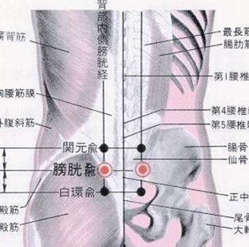 按摩膀胱俞的好处 按摩膀胱俞的手法