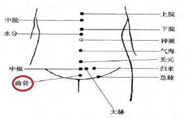 曲骨的准确位置图 曲骨的功效和作用